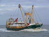 UK-217 Sold outside fishing industry