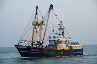 UK-287 sold to Texel